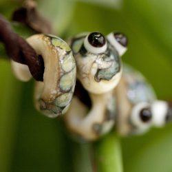 silberbraun-schlangen