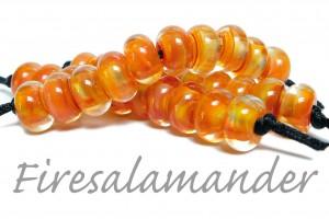 firesalamander_sandra-arduwie